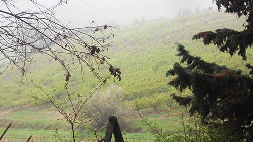 Vendita acquisto terreni bologna for Passi per l acquisto di terreni e la costruzione di una casa